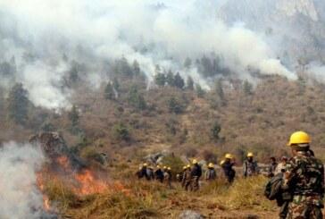 मनाङमा जंगलकाे आगो निभाउन बनाइयाे अग्निरेखा, नियन्त्रण भएन